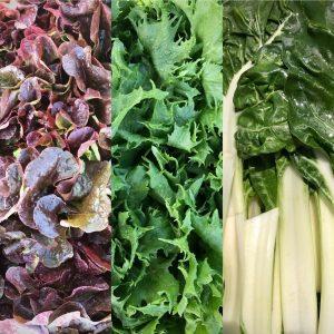 Salades et feuilles